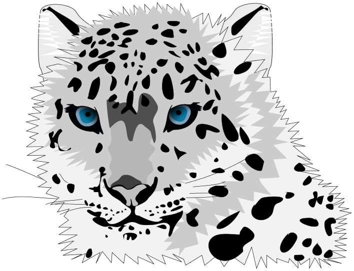 leopard transparent white background