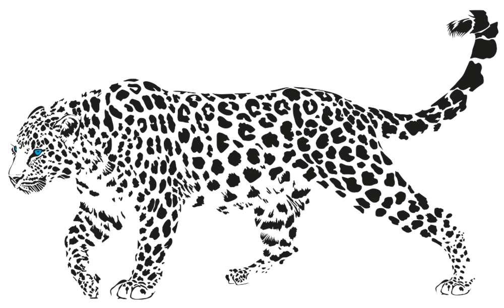 Drawing Panther Jaguar Transparent Clipart Free Download