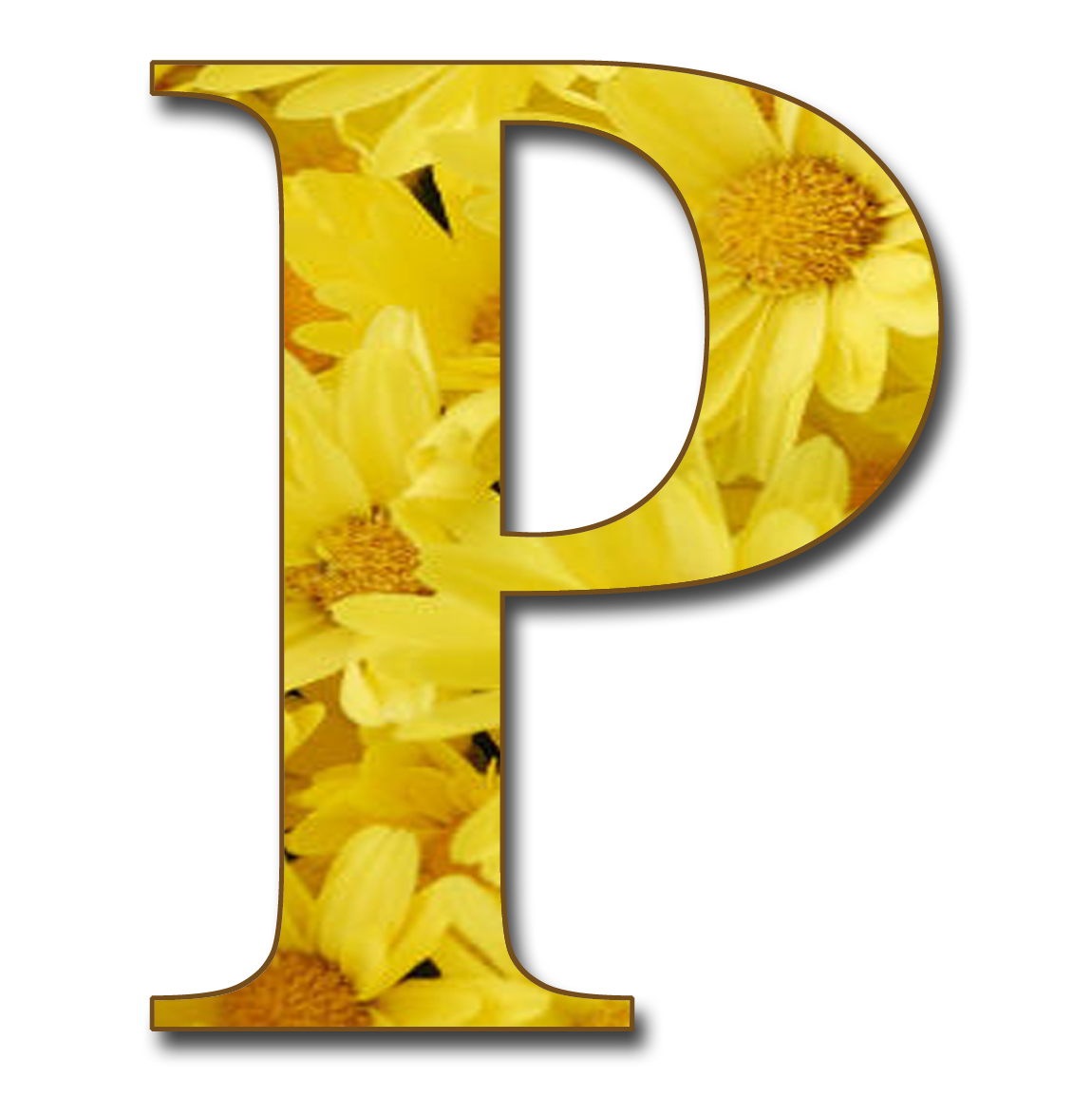 Letter p with the shadow png. For me and my
