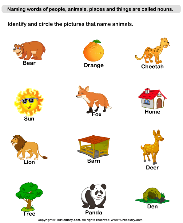 Letters vector animal. Letter animals solid