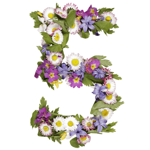 Letters with flowers png. Wildflowers font handmadefont