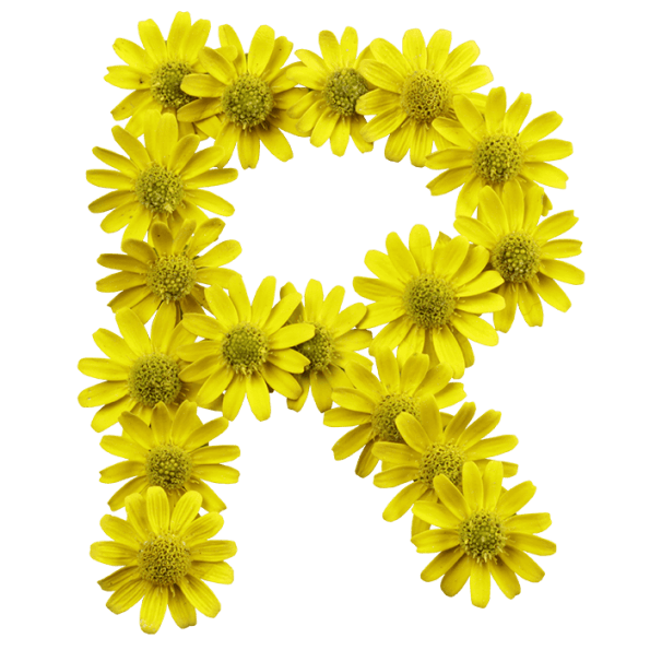 Letters with flowers png. Buy yellow font and