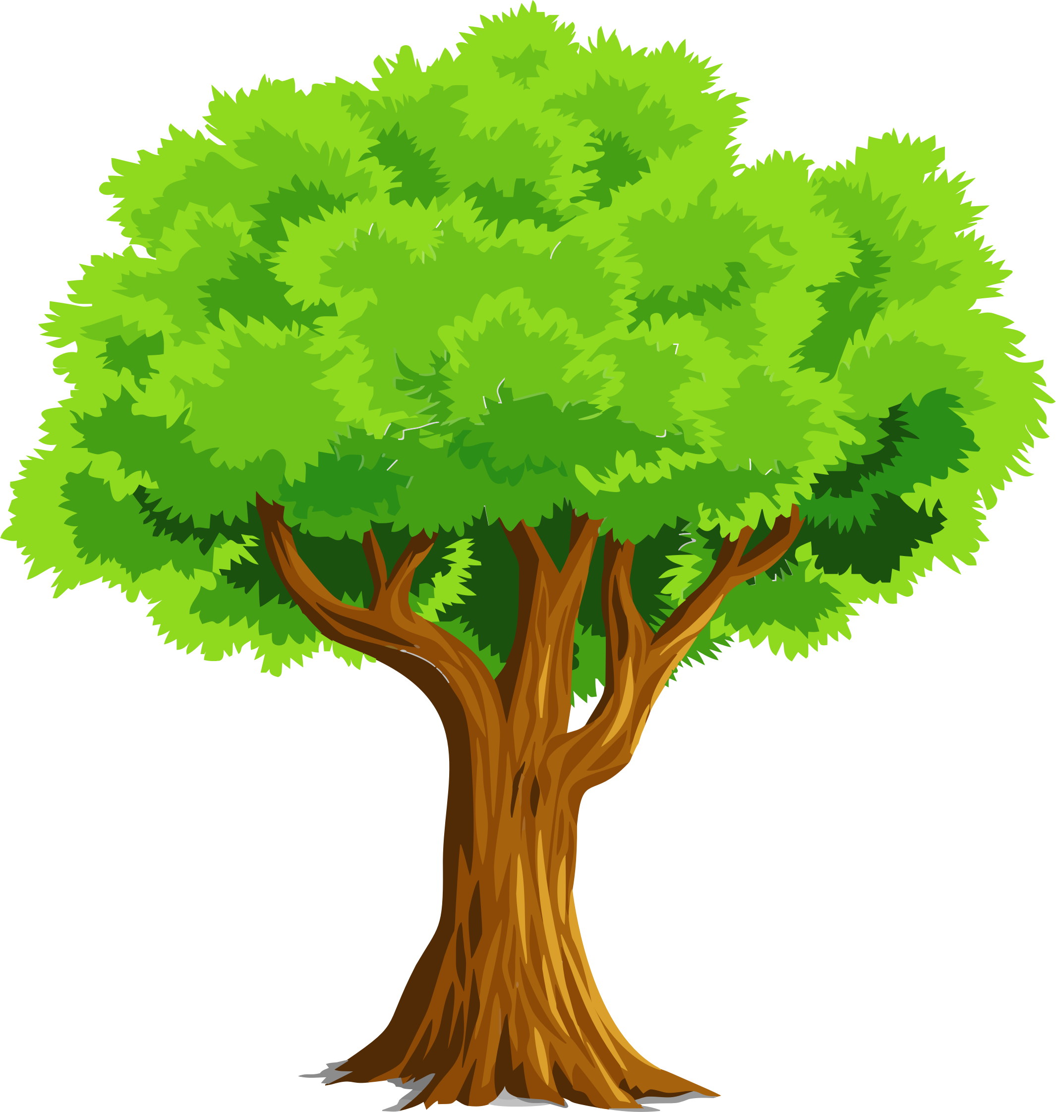 Nature clipart doodle. Colorful natural tree by