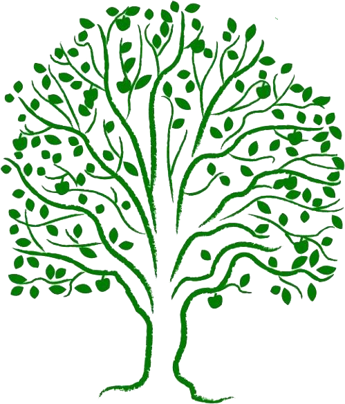 Tree of life png. Free download clip art