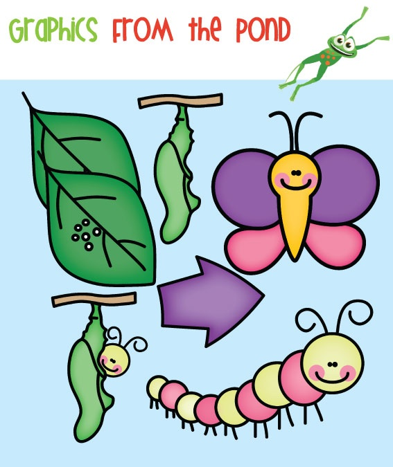 Lifecycle. Clip art life cycles