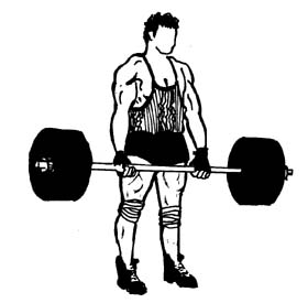 Weight clipart lift weight. Lifting clip art panda