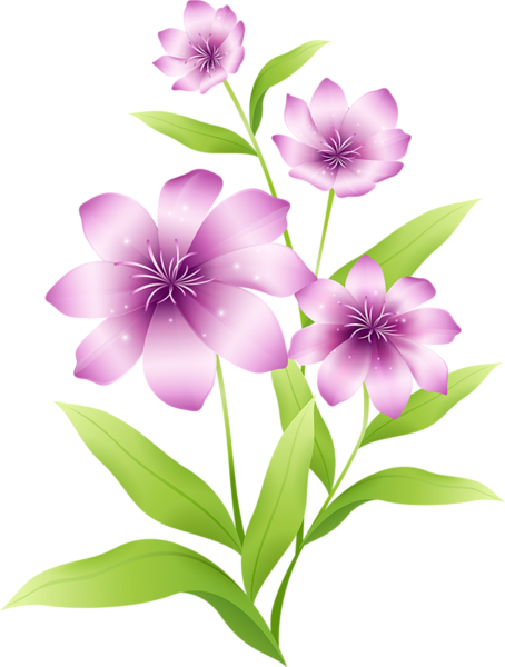 Light pink flowers png. Large clipart pinterest