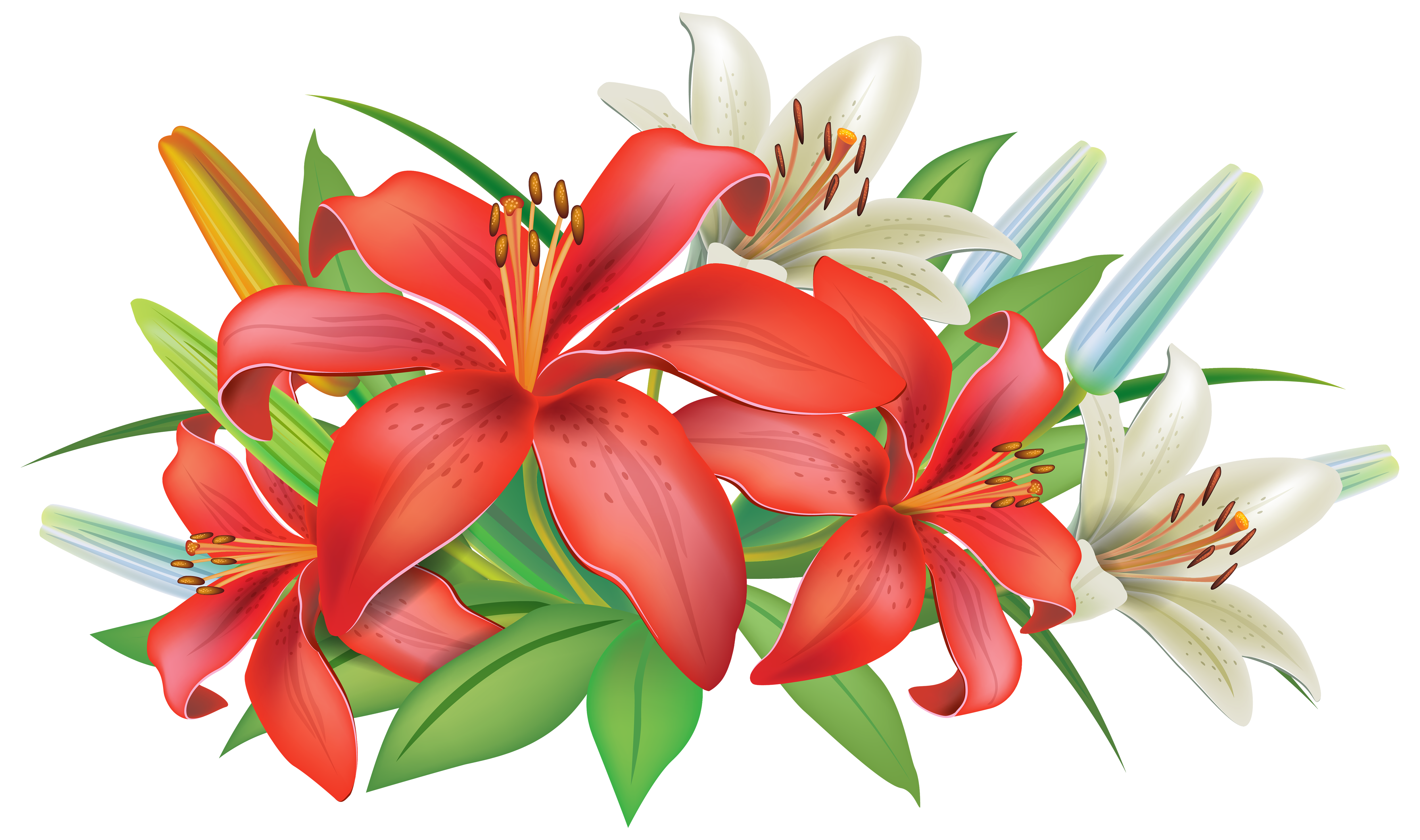 Lilies clipart. Red flowers decoration png