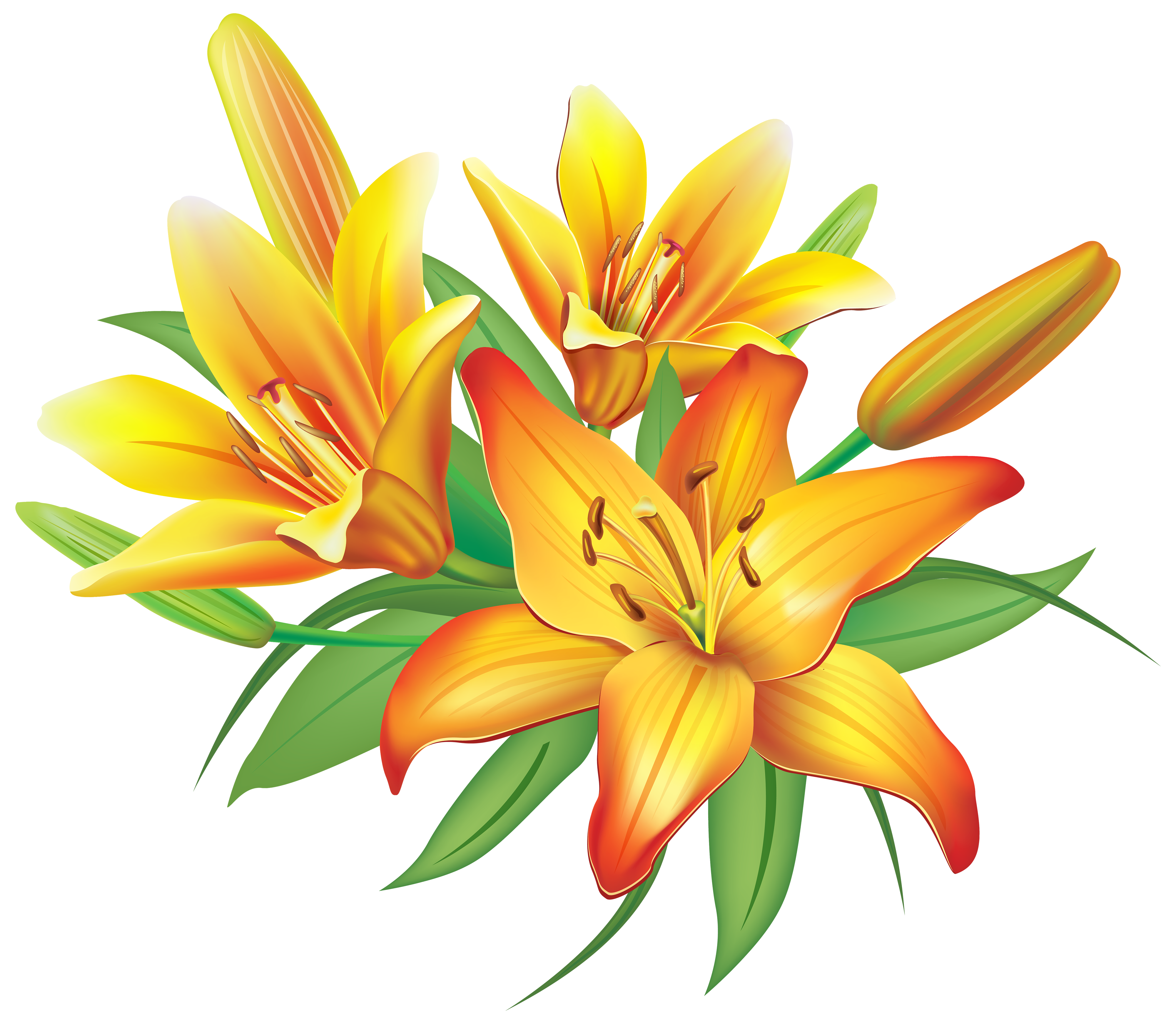 Lily clipart orange lily. Yellow lilies flowers decoration