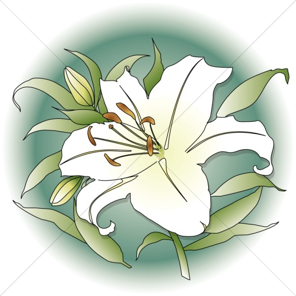 Lily clipart funeral flower. Spring with green circle
