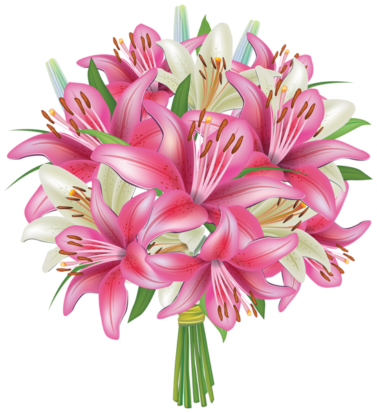Lilies clipart lily stem. White and pink flowers