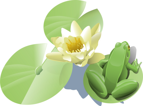 Art animation water lily. Lilypad drawing leaf clip freeuse library