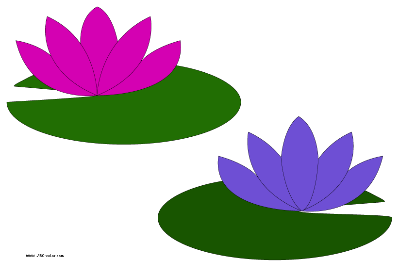 Lily clipart animated water. Lilypad drawing pond banner library library
