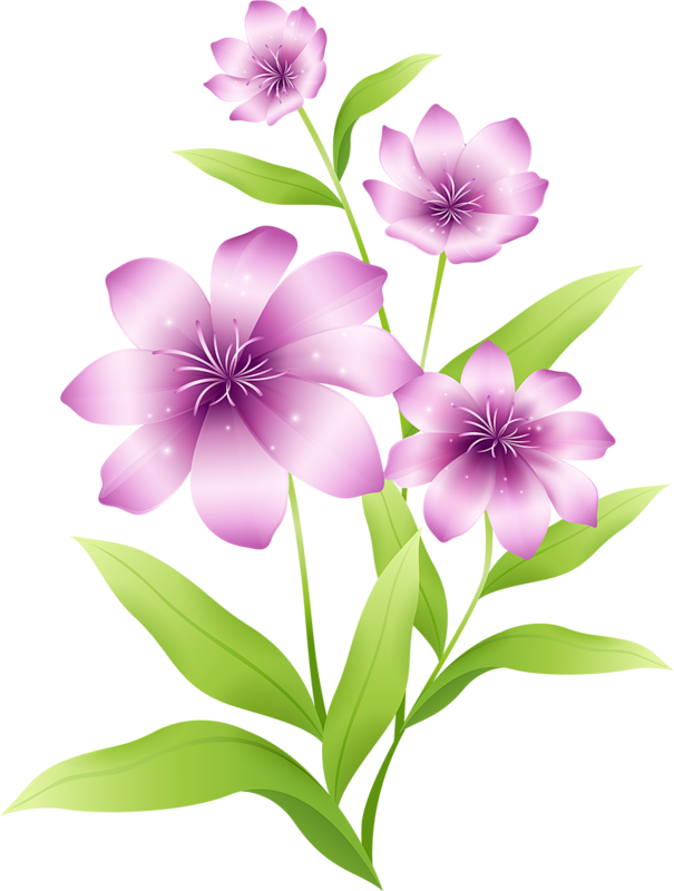 Lily clipart light purple flower. Large pink flowers gallery