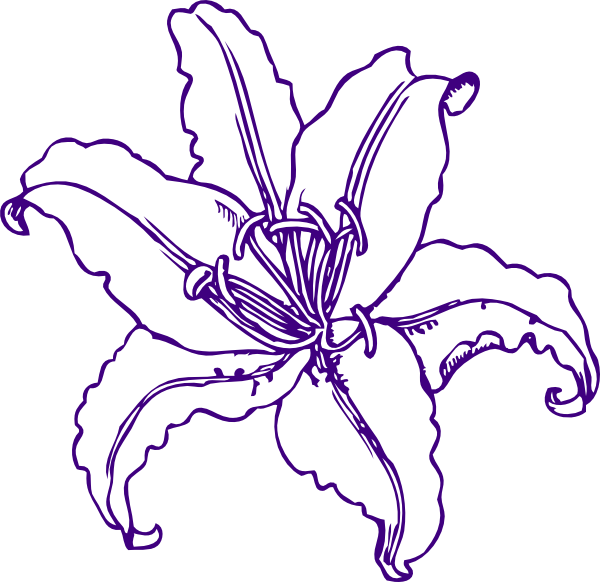 Lily clipart light purple flower. Lilly clip art at