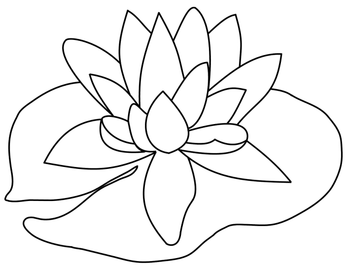 Lily pad flower png. Lilypad drawing graphic