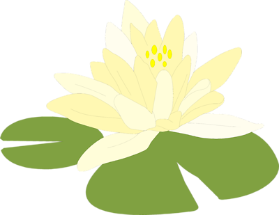 Lilypad drawing leaf. Free lily pad picture