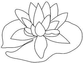 Lilypad drawing simple. Scribbles designs f lily