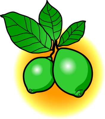 Lime clipart lime tree. Image limes food clip