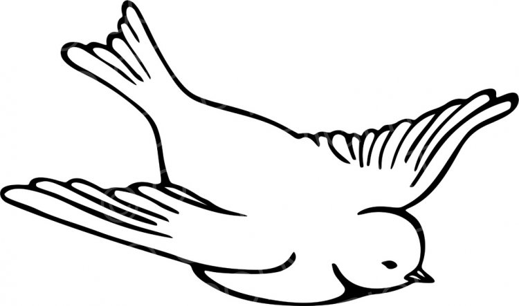 Line clipart bird. Black white drawing of