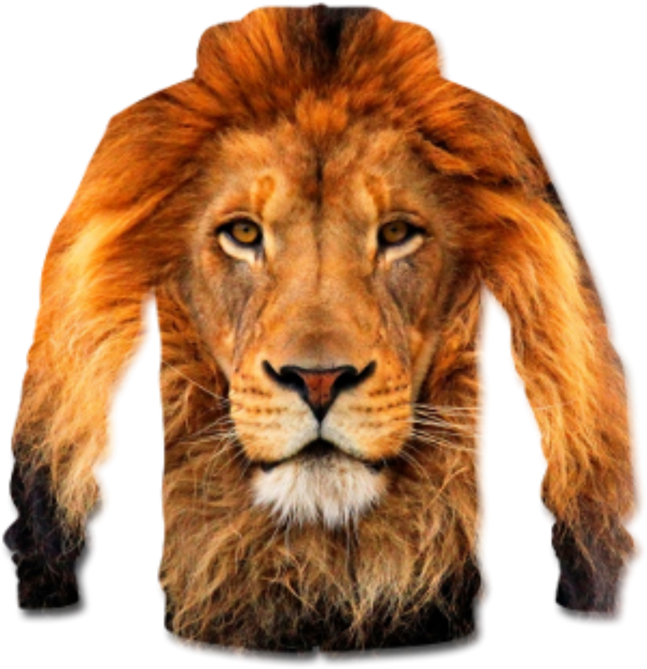Lion. Clipart t shirt big