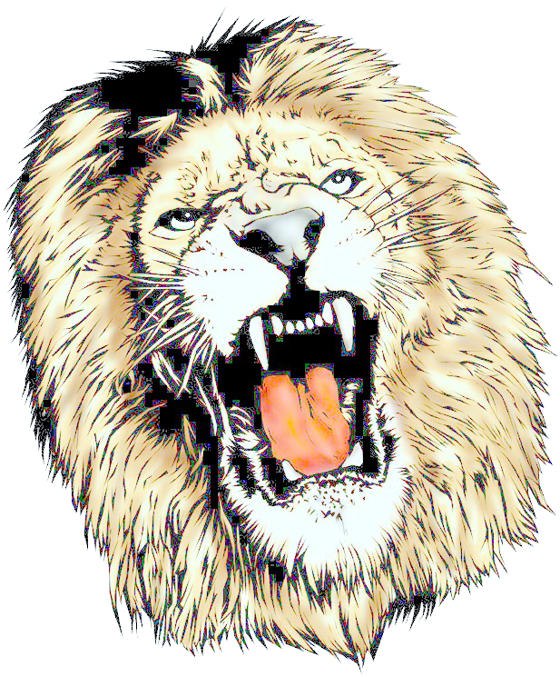 Lion head clipart png. Download free icons and