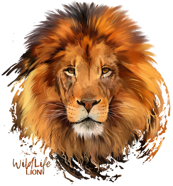 Lions head png. Lion transparent images all