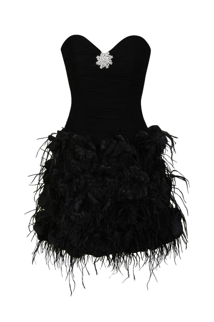 Little black dress png