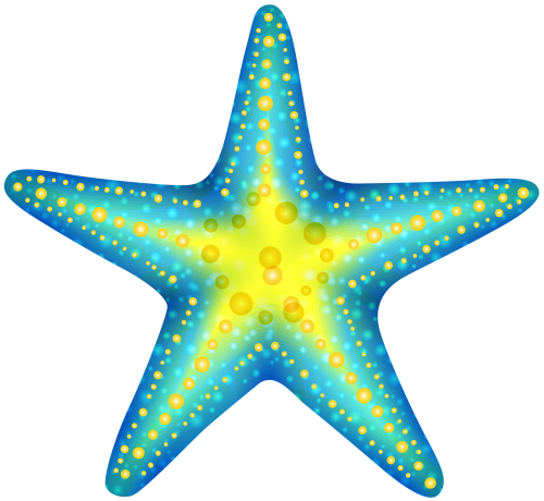 drawing starfish colour