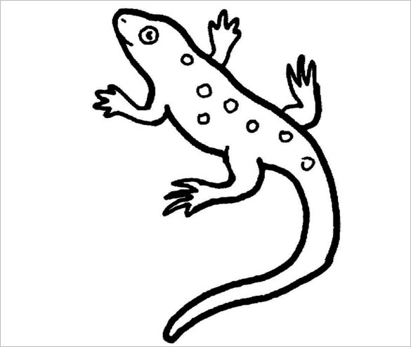Lizard clipart colour. Drawing pictures at getdrawings
