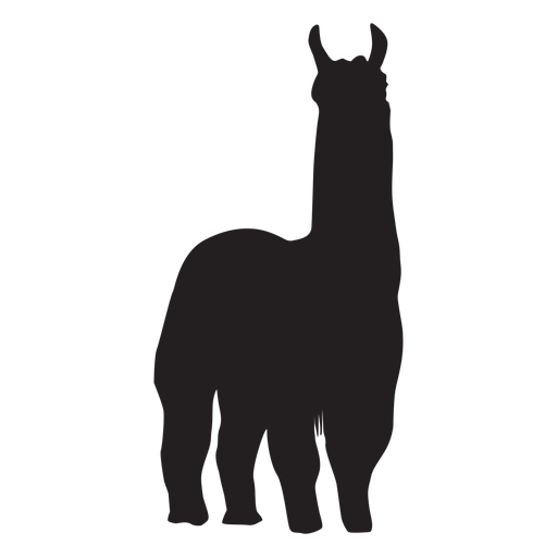 Llama png white. Isolated standing silhouette transparent