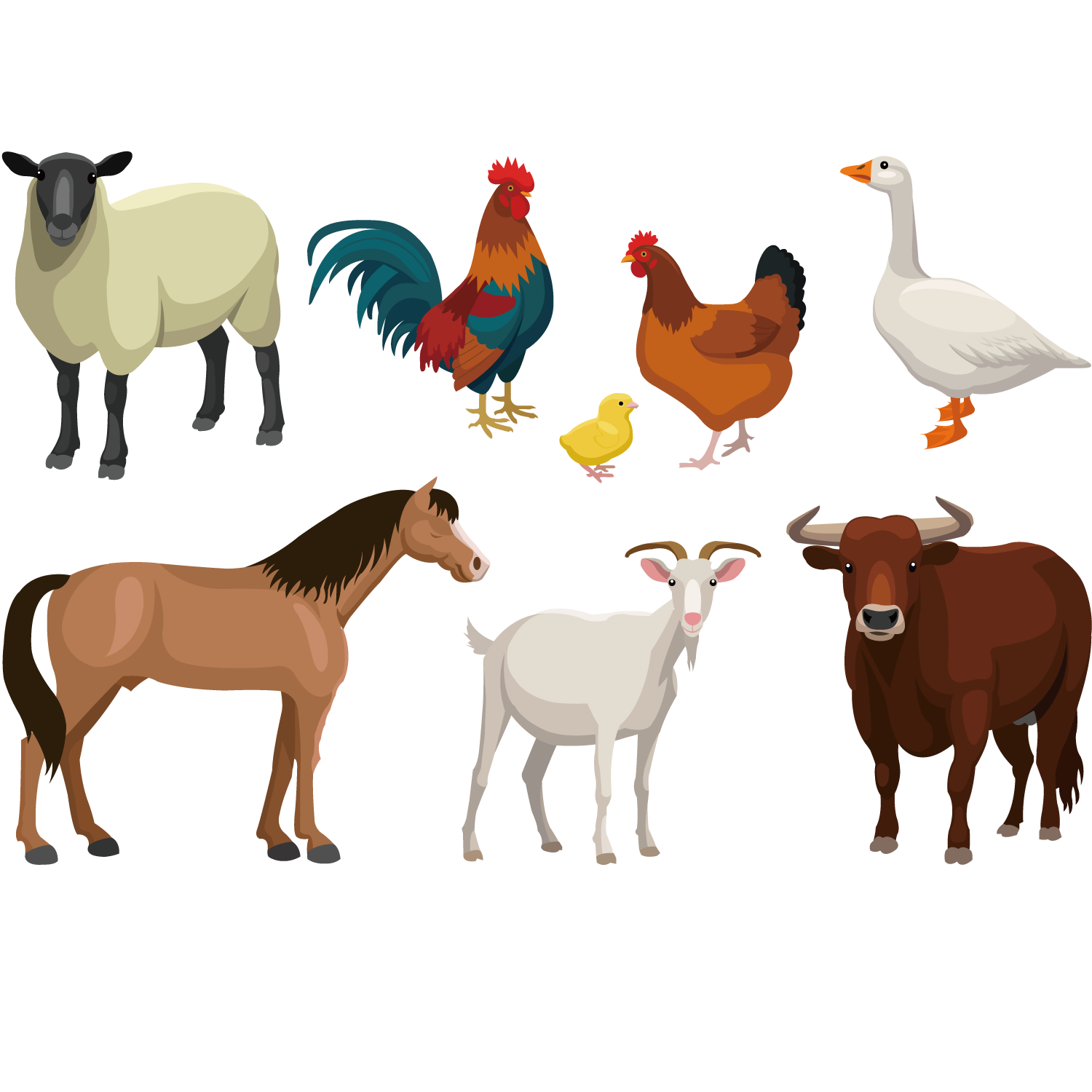 Llama animal vector png. Cattle goat sheep livestock