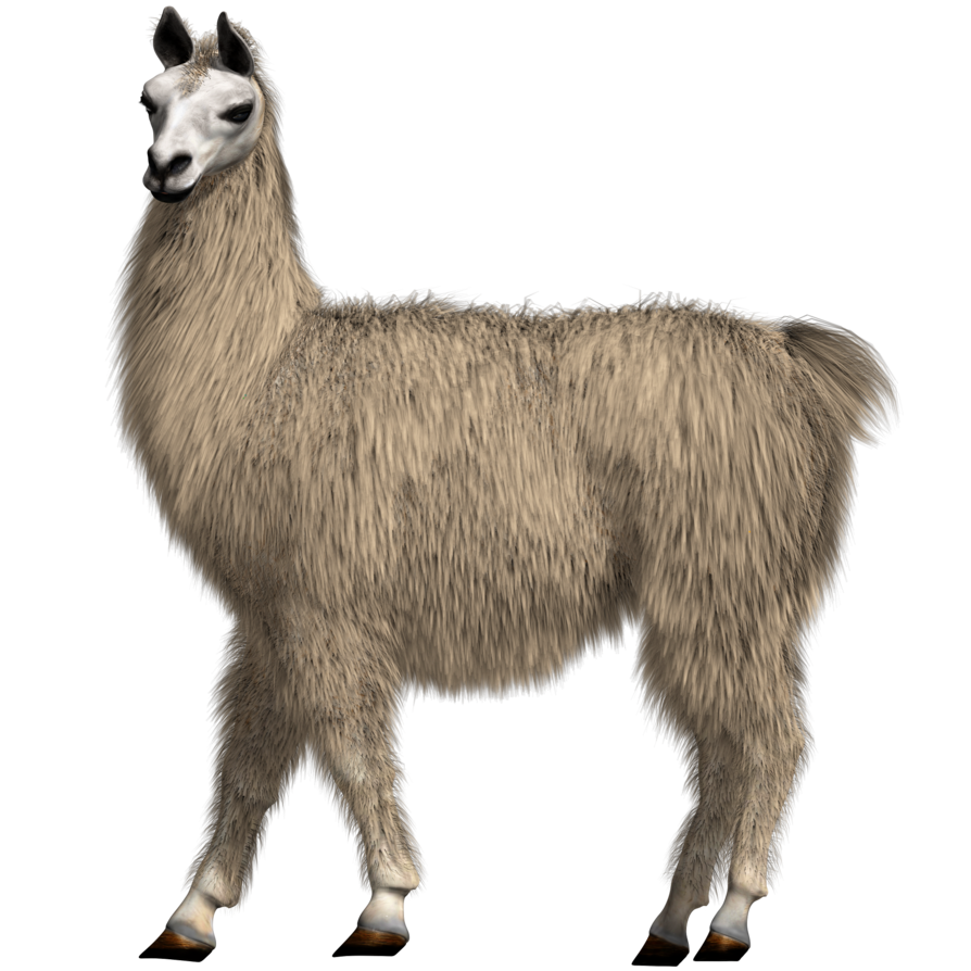Lovable test by kickair. Llama png clipart stock