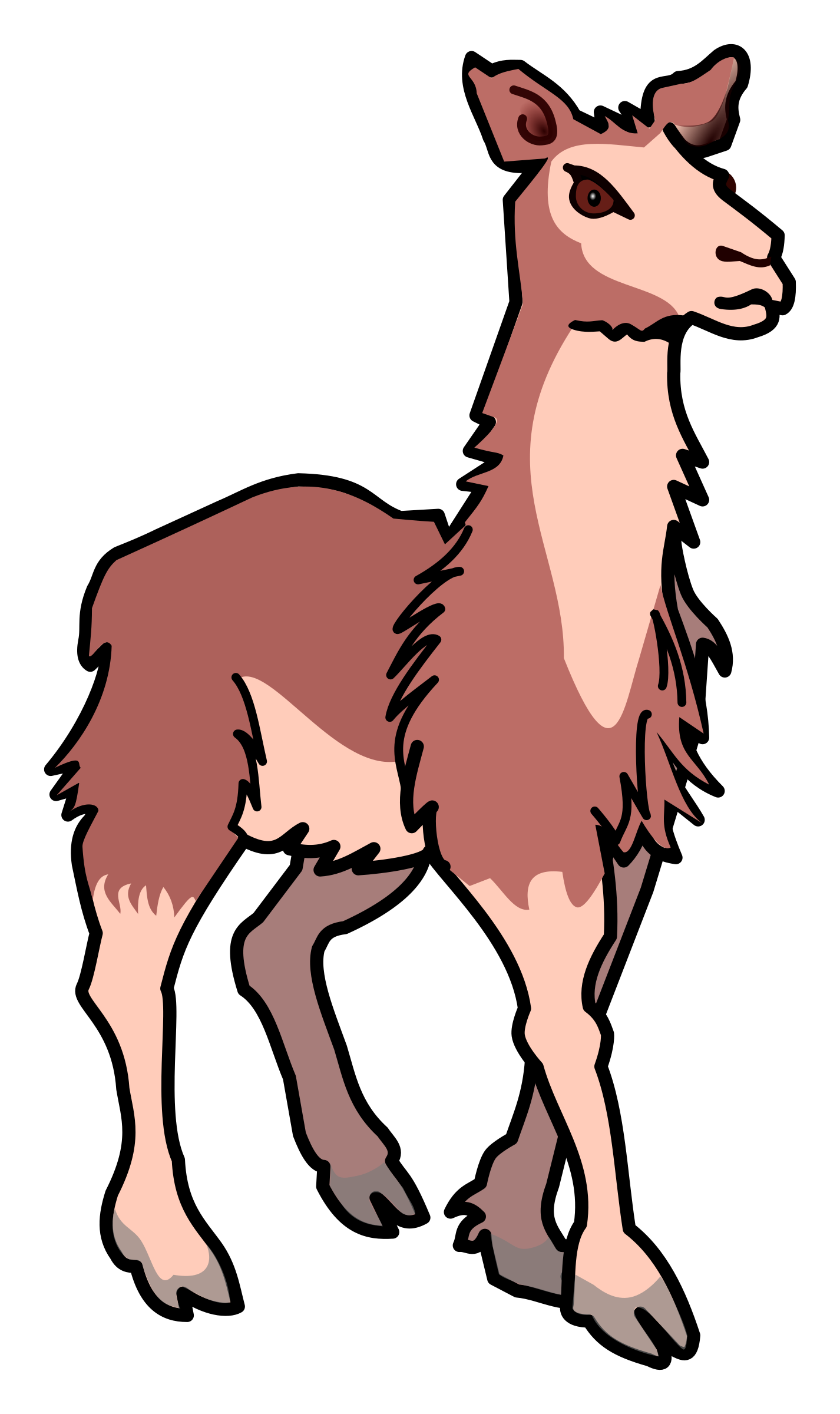 Llama cartoon png. Coloured icons free and