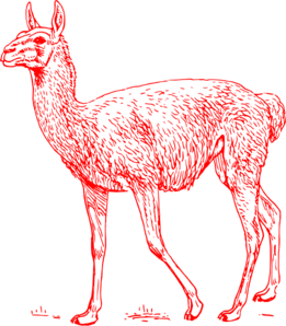 Llama clipart llama outline. Red clip art at