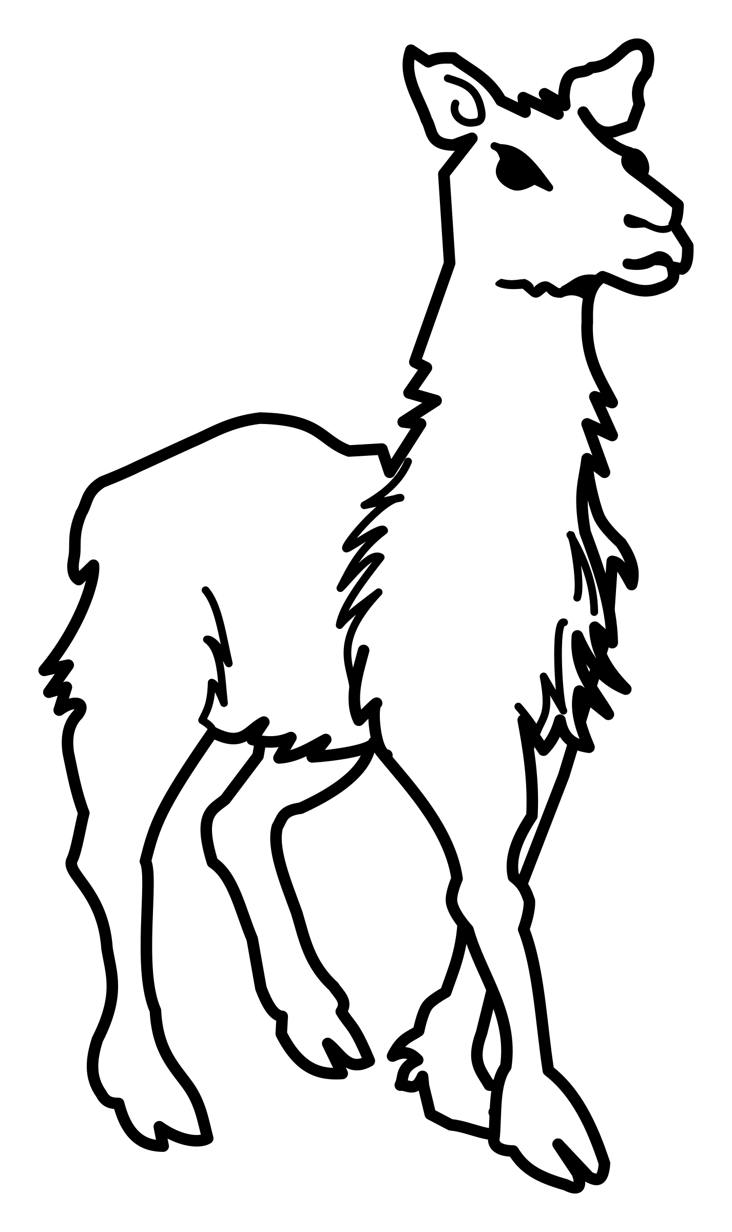 Llama outline png. Lineart icons free and