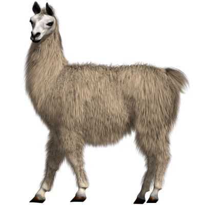Dlpng. Llama png picture library library
