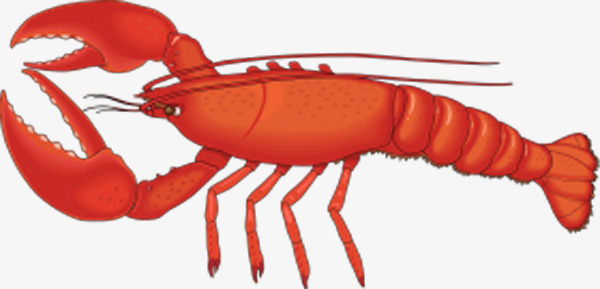 Lobster clipart border. Angle clamp red long