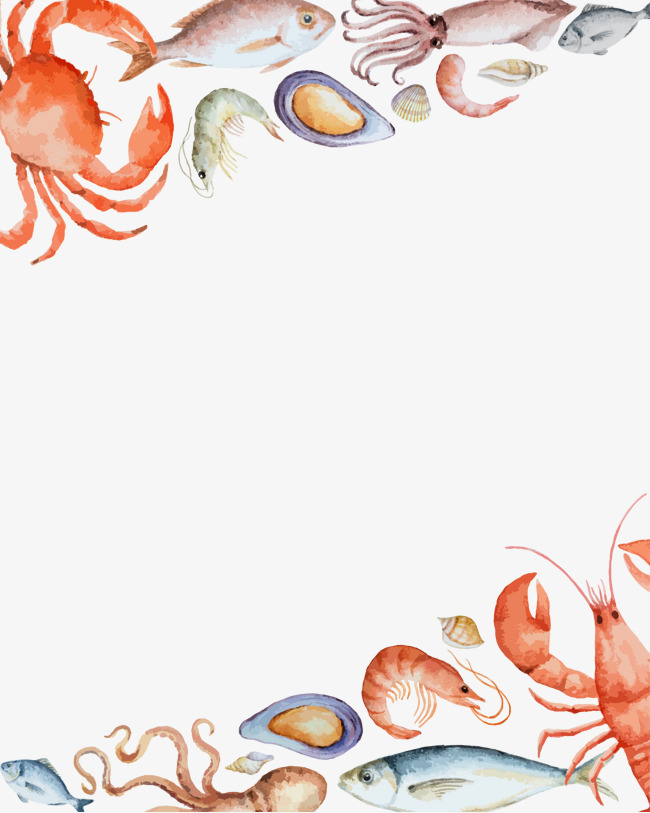 Lobster clipart border. Vector seafood background feast