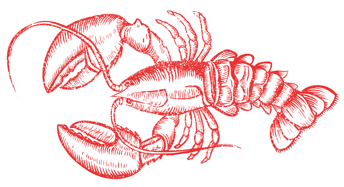 Seafood drawing lobster maine. The