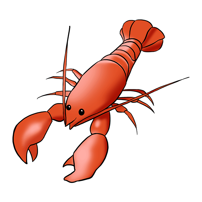 Seafood drawing lobster. How to draw a