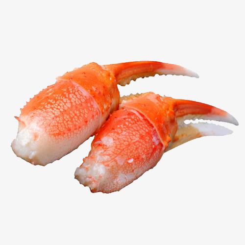 Alaskan claw product kind. Lobster clipart snow crab vector freeuse download