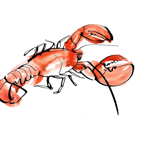 Lobster watercolor png. Seafood painting drawing illustration