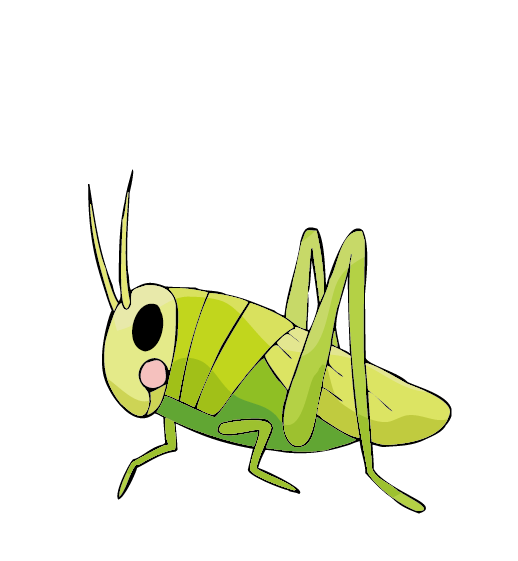 Locust drawing. Insect cricket large grasshopper
