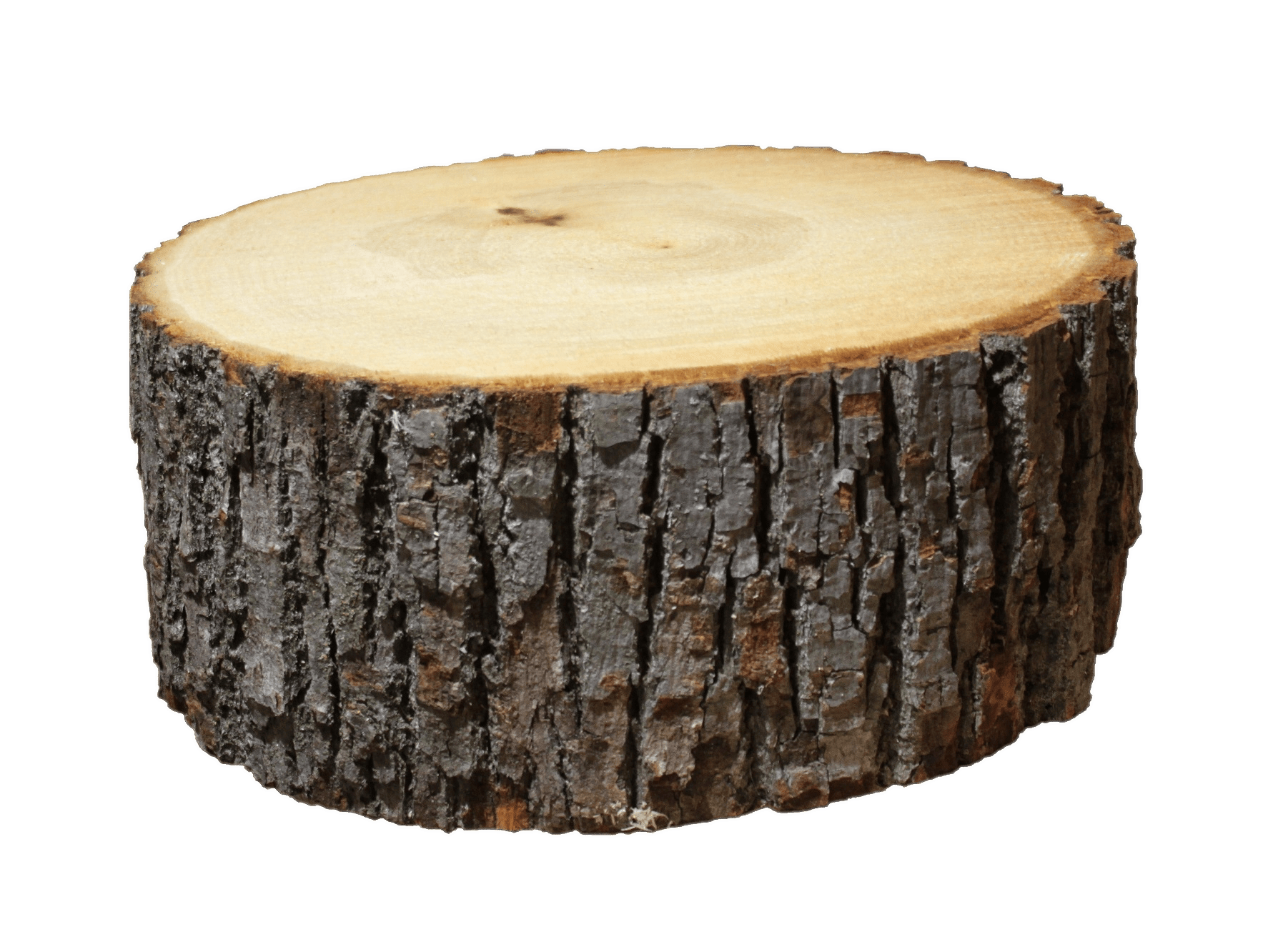 Log png image. Section transparent stickpng nature