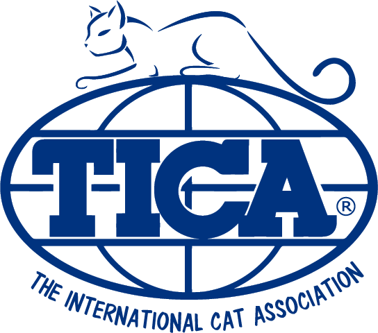 Logo website png. Tica marketing download transparent