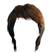 Long guy hair png. Images in collection page
