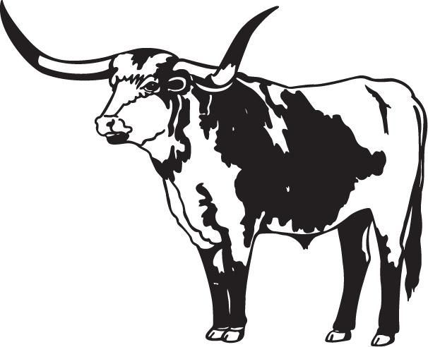Cattle clipart cow horn. Pin by brent mason