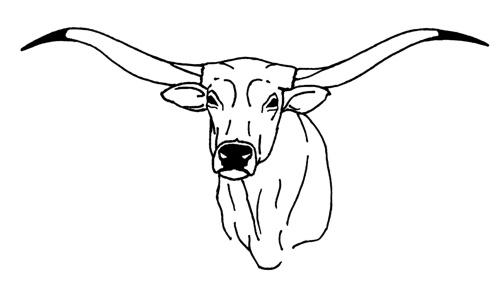 15 longhorn clipart template for free download on ya webdesign