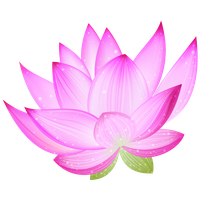 Lotus clipart. Download free png photo
